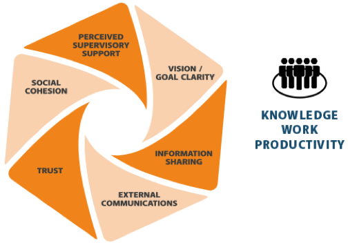 Knowledge Worker Productivity - Maintaing Trust in the workplace - workplace productivity - workplace management - workplace strategy - awa - advanced workplace associates